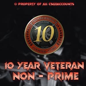 10 Year Veteran Coin
